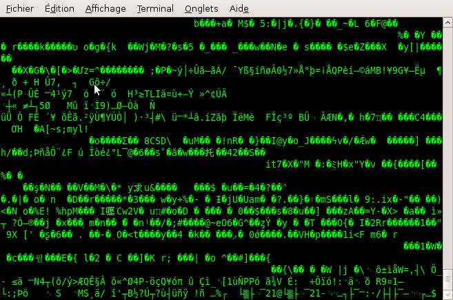 Affichage d'un fichier gzippé