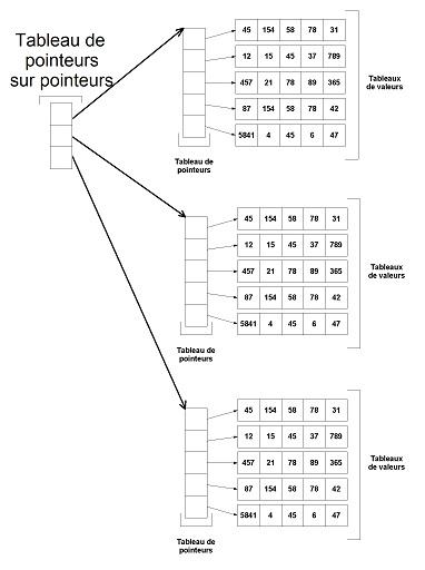 Tableaux Pointeurs Et Allocation Dynamique Openclassrooms