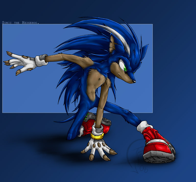 Sonic the Hedgehog wolf