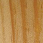 structure des cernes