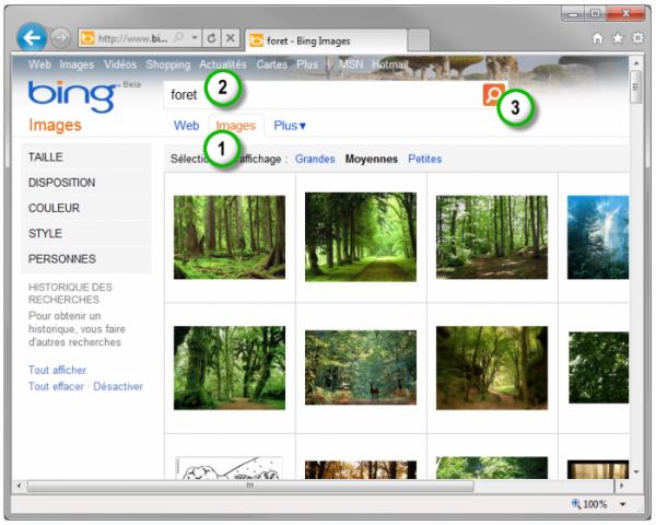 Recherche d'une illustration dans Bing