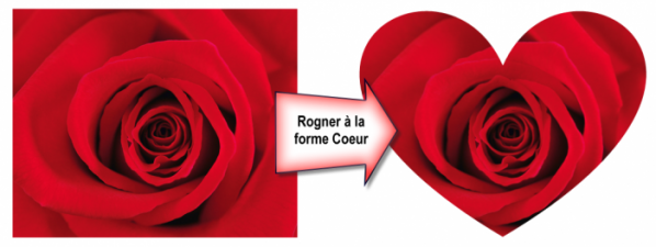 Une rose dans un cœur. Quelle imagination !