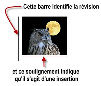 Deux indices montrent que l'image a été insérée