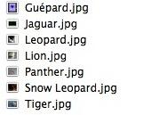 Une liste de fichiers .jpg