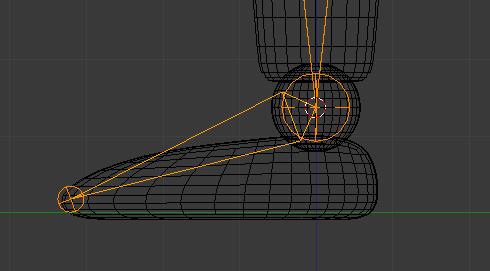L'os du pied en vue de profil