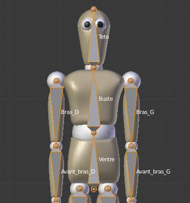 Pensez à nommer les os !