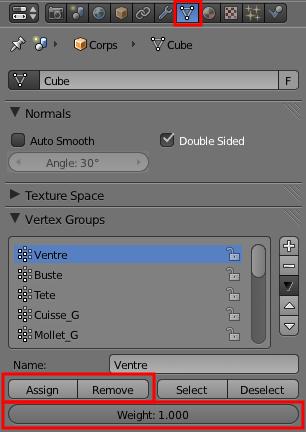 Le menu Object Data avec l'assignation des Vertex Groups