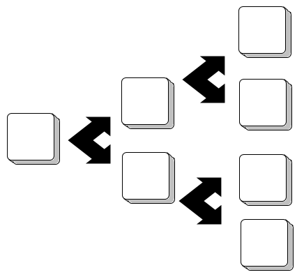 Arbre binaire (deux successeurs possibles)