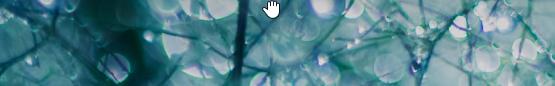 Dans une application, placez la souris en haut de l'écran pour que le curseur se transforme en main.