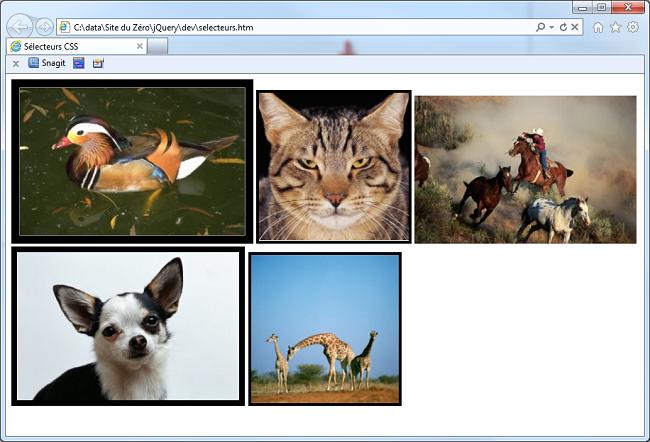Le code exécuté dans Internet Explorer
