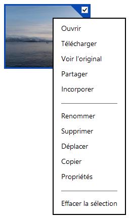 Menu contextuel d'un fichier sur SkyDrive Web