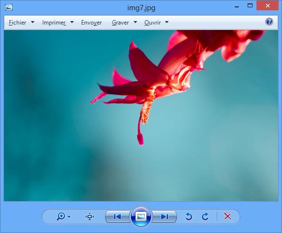 La visionneuse de photos Windows