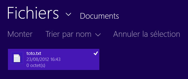 Fichier sélectionné dans SkyDrive Metro