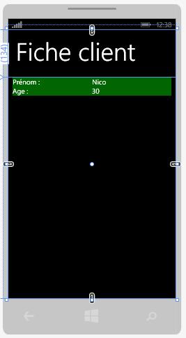 Affichage des données en mode design grâce à MVVM