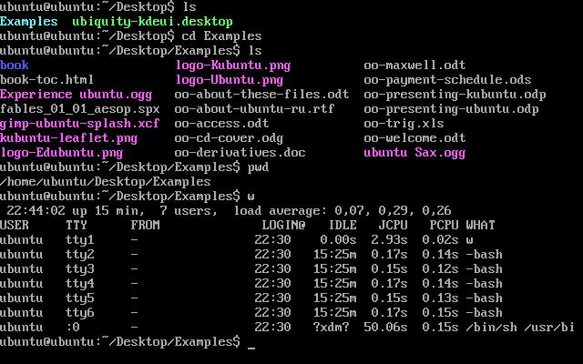 Le mode console. Oui oui, il s'agit bien d'un Linux du XXIe siècle !
