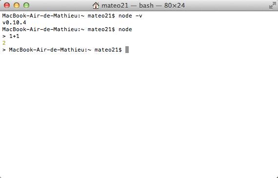 Running Node.js in the Terminal