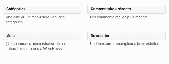 Le widget Newsletter