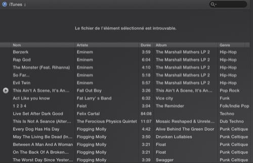 Votre bibliothèque iTunes