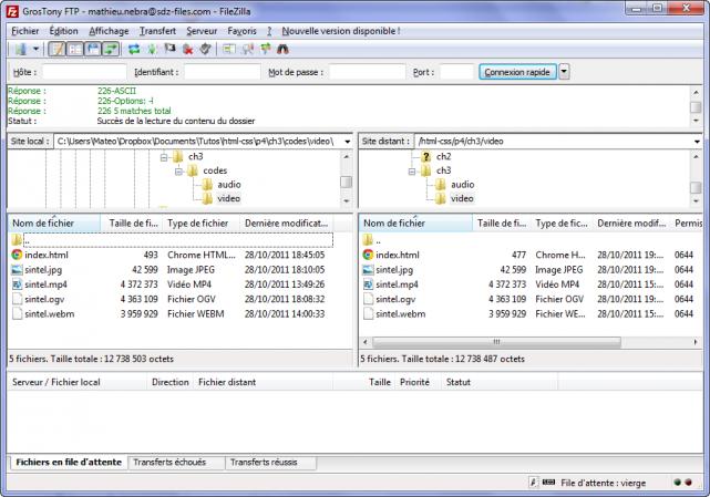 Des fichiers sont hébergés sur le FTP