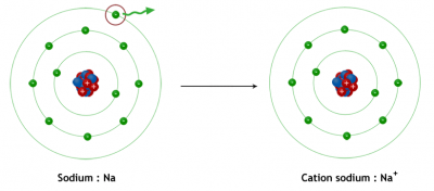 Formation du cation sodium