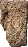 Tablet BM 13901