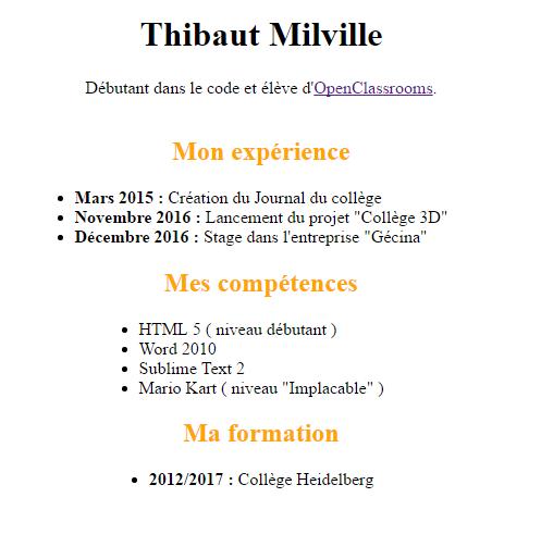 r u00e9solu  liste  u00e0 puce centr u00e9e verticale par thibaut milville - page 1