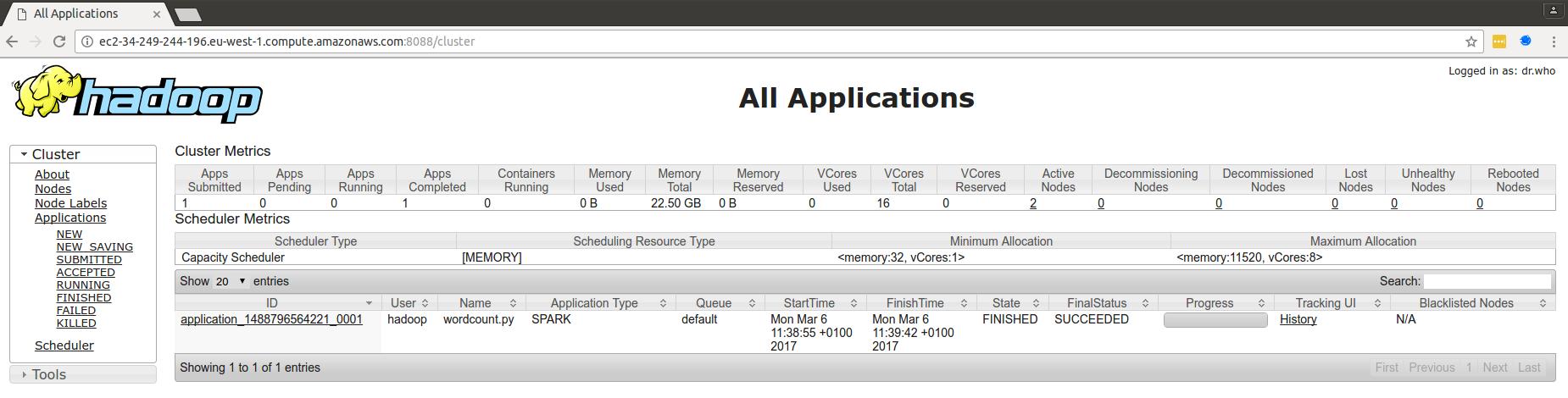 Hadoop resource manager