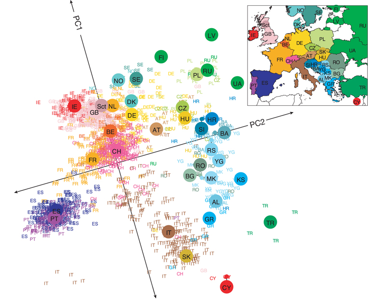 Les deux premières composantes principales des génomes de 1387 Européens correspondent à... une carte de l'Europe