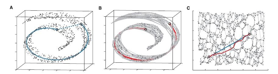 L'exemple célèbre du swissroll sur lequel est appliqué l'algorithme de l'isomap. La 3ème image montre en rouge la distance géodésique finale
