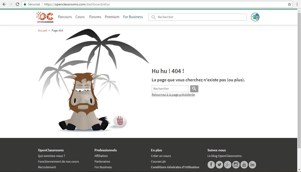 Resolu Creer Un Page Pour Tous Les Url Comment Creer Les Liens Pour Tous Les Url Par H1800 Openclassrooms