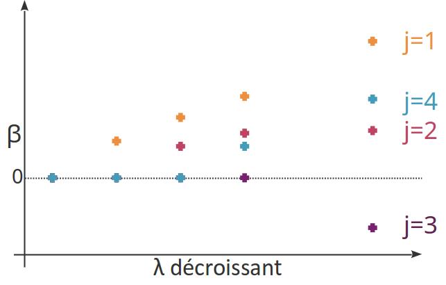 Exemple de chemin de régularisation du lasso.