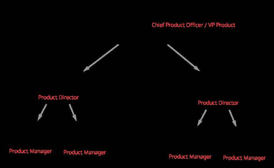 Large Product Organization