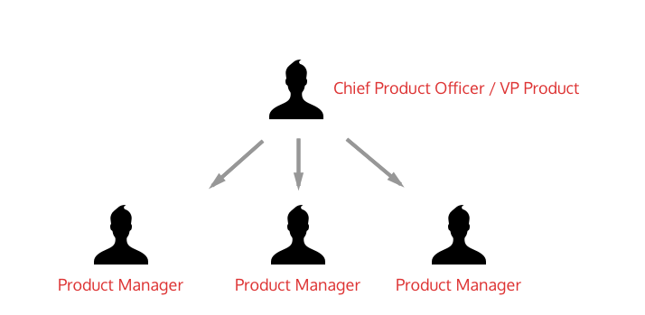 Medium-Sized Product Team - Typical Organizational Structure
