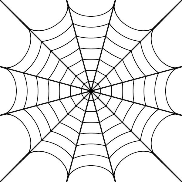 Le Web est plutôt une... toile d'araignée
