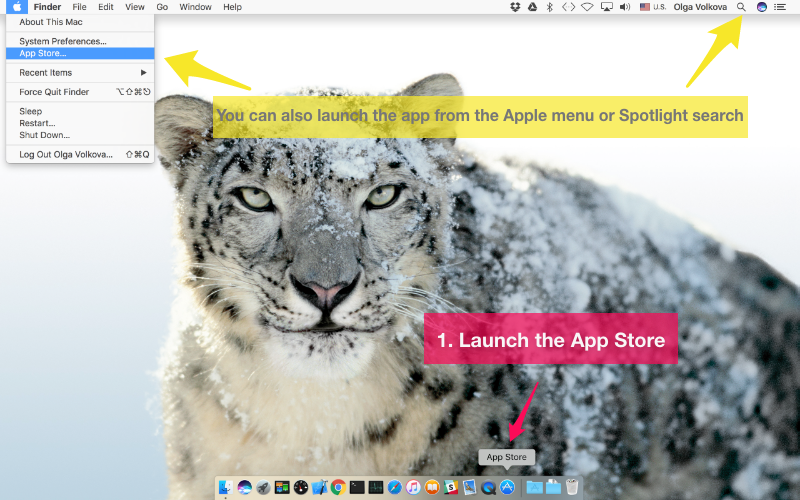 Launch the App Store app on your Mac