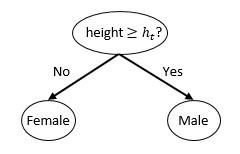 Un stump est un arbre de décision très simple