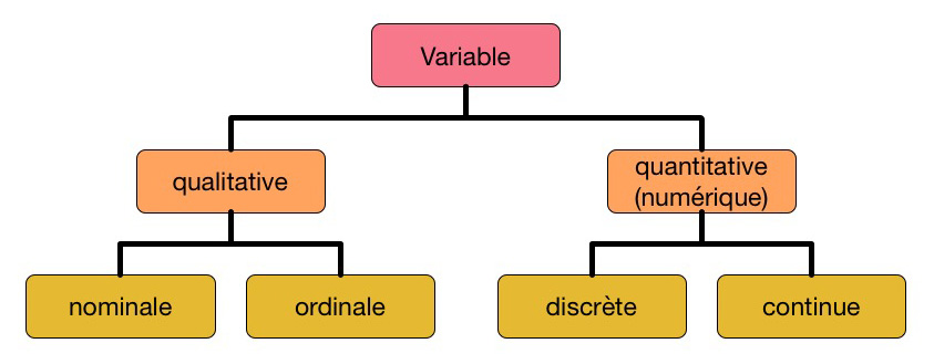 Types de variables