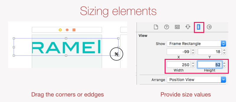 Sizing elements in Interface Builder
