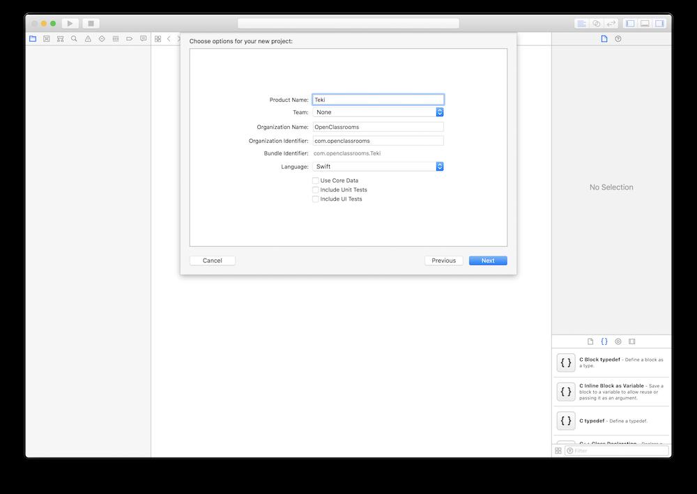 Impression d'écran de l'étape de définition des paramètres du projet.
