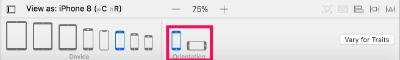 Xcode orientation panel