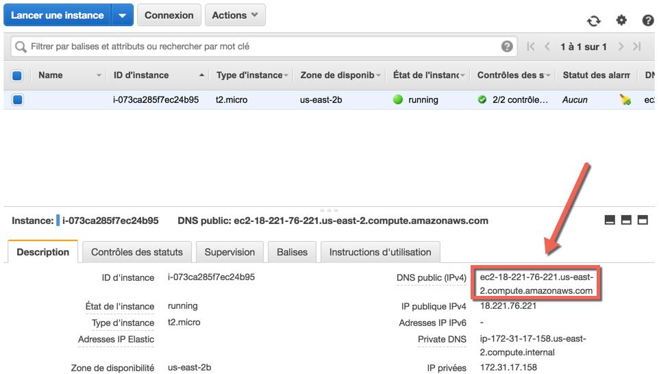 On retrouve l'adresse de notre serveur dans l'interface EC2