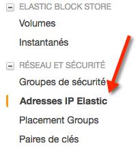 Le menu pour accéder aux IP Elastic