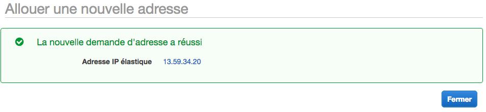 On a obtenu une IP Elastic !