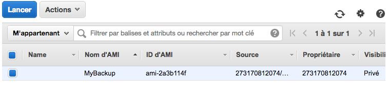 Un AMI a été créé à partir de notre serveur !