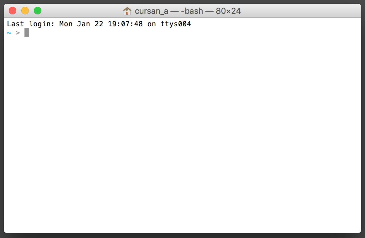 Fenêtre par défaut du Terminal sous Mac OS.