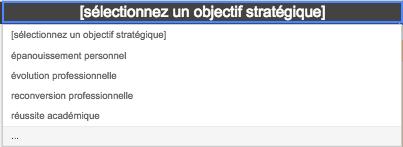Capture d'écran d'un menu déroulant permettant de sélectionner un objectif stratégique