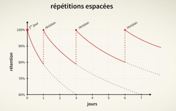 Schéma de révision basée sur méthode de répétitions espacées de Pimsleur