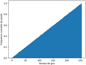 L'histogramme cumulé normalisé de l'image peu contrastée après égalisation