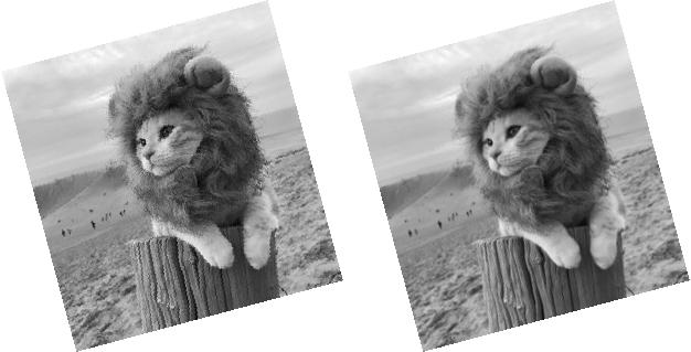 Notre image après une rotation de 35° avec une interpolation au plus proche voisin (à gauche) et une interpolation bilinéaire (à droite)