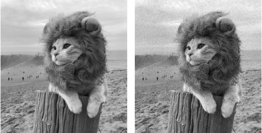 Simba (à gauche) et Simba victime du bruit gaussien (à droite)